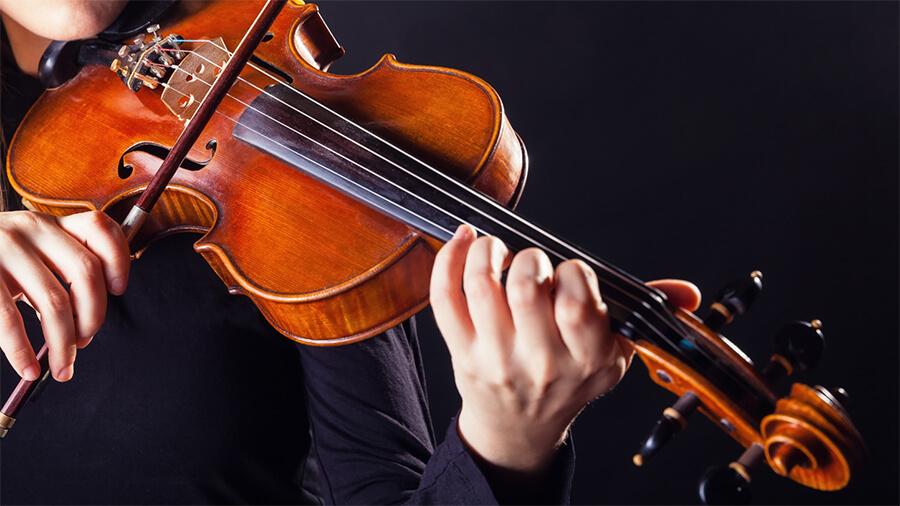 National Violin Day