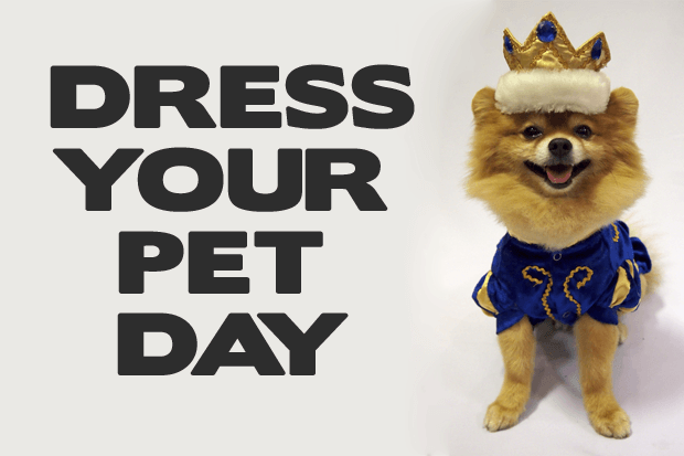 National Dress Up Your Pet Day – January 14, 2020