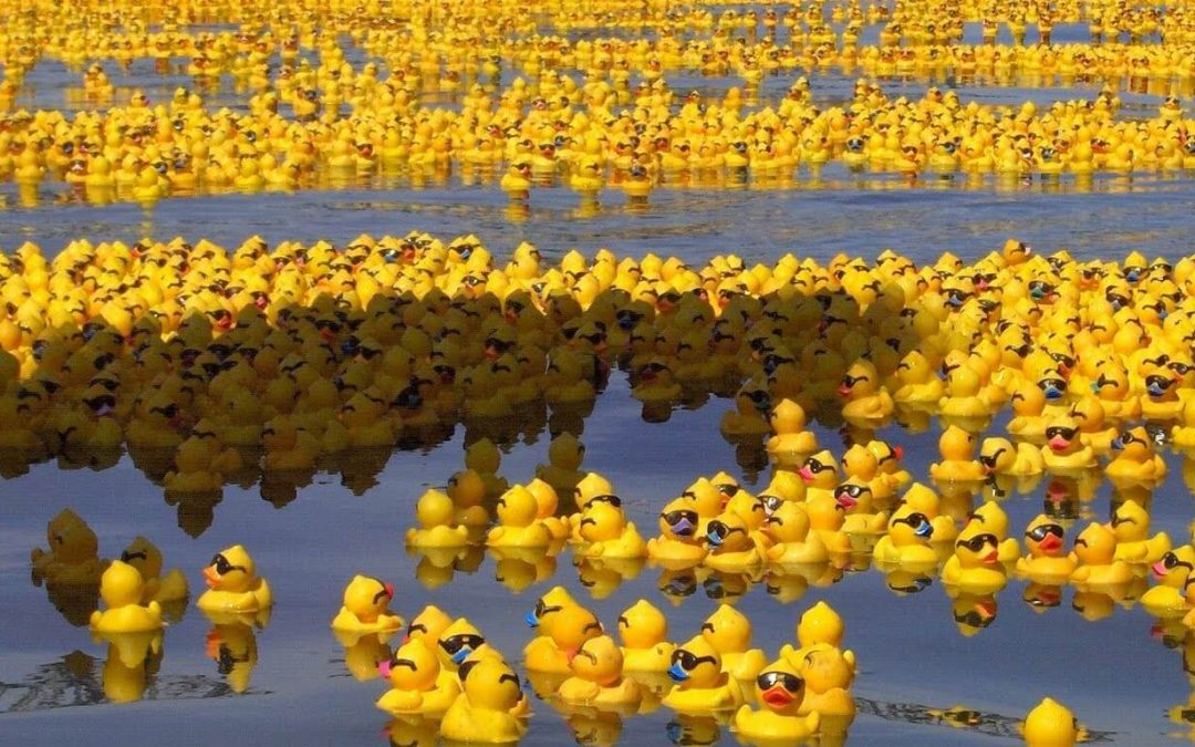National Rubber Ducky Day