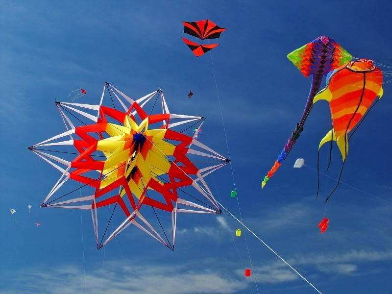 National Kite Flying Day 2018 - February 8