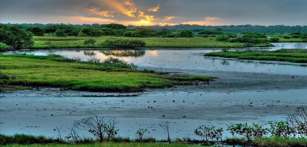 World Wetlands Day 2018 - February 2