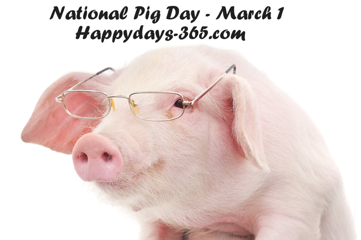 National Pig Day – March 1, 2019