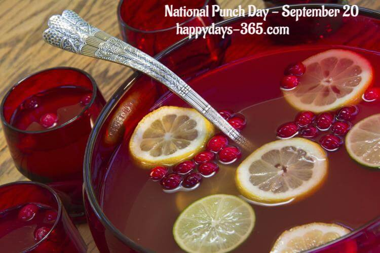 National Punch Day – September 20, 2018