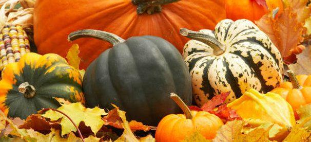 National Pumpkin Day – October 26, 2020