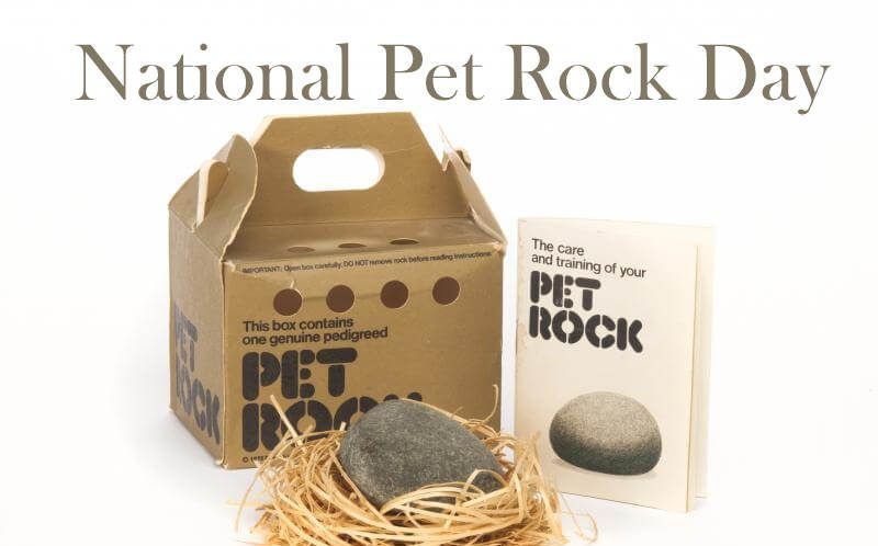 National Pet Rock Day – September 5, 2021