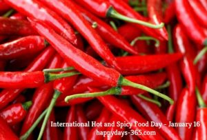 International Hot and Spicy Food Day