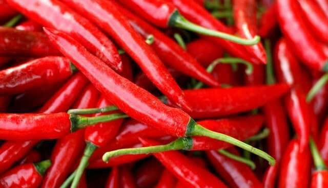 International Hot and Spicy Food Day – January 16, 2021