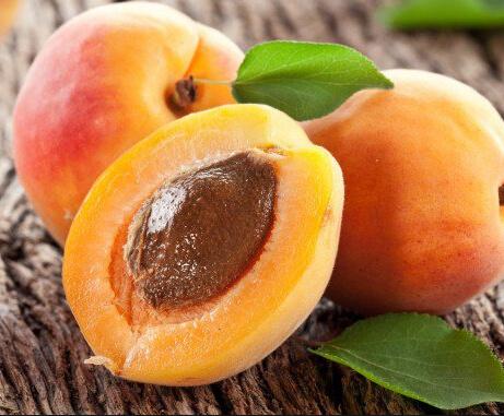 National Apricot Day 2018 - January 9