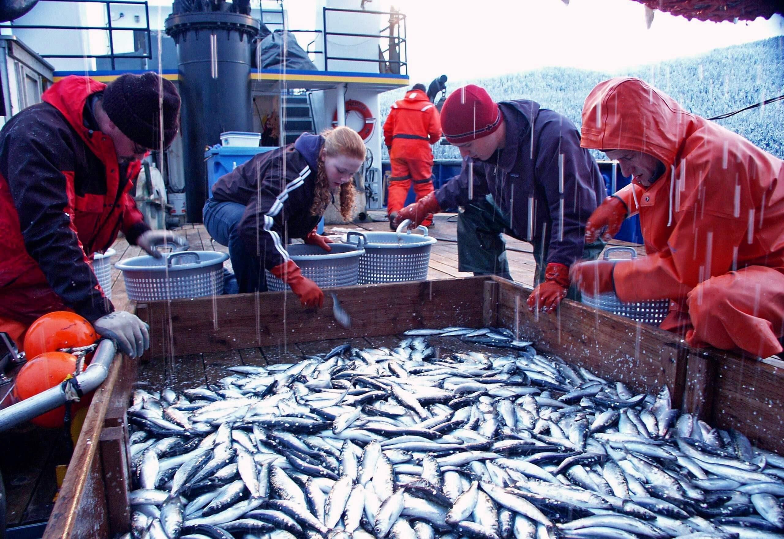 World Fisheries Day – November 21, 2020