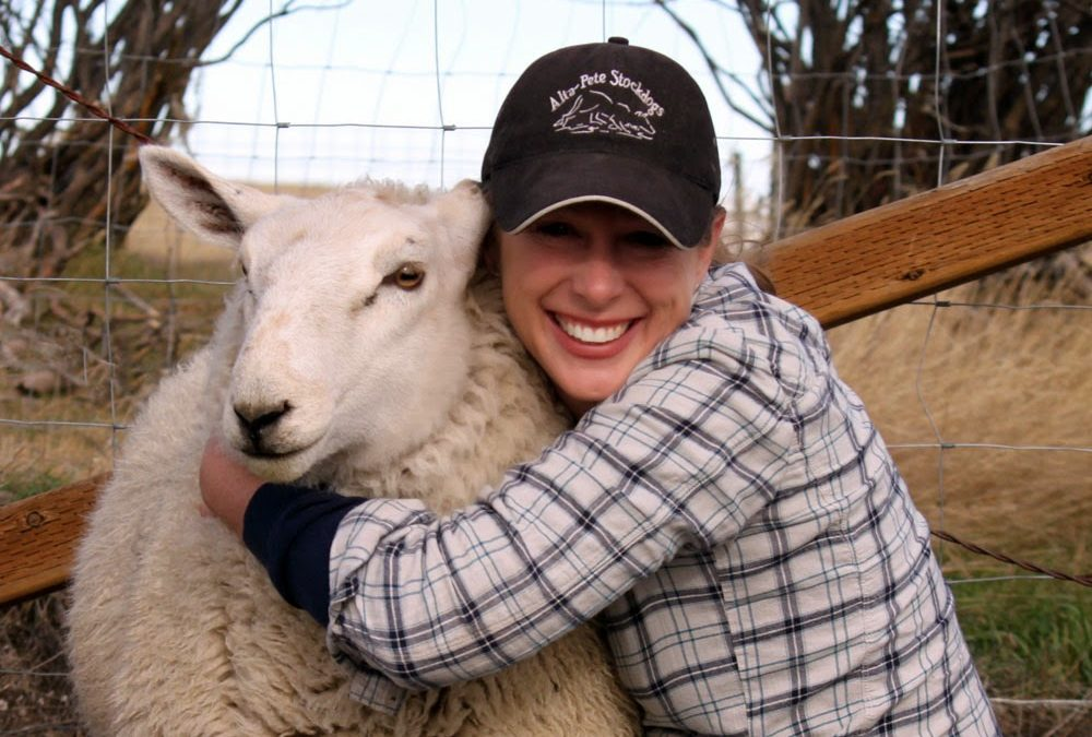 National Hug A Sheep Day – October 26, 2019
