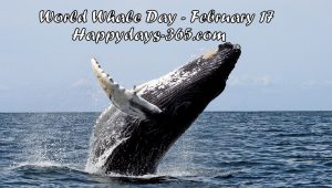 World Whale Day 2018 - February 17