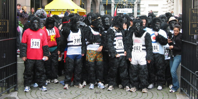 National Gorilla Suit Day 2018 - January 31