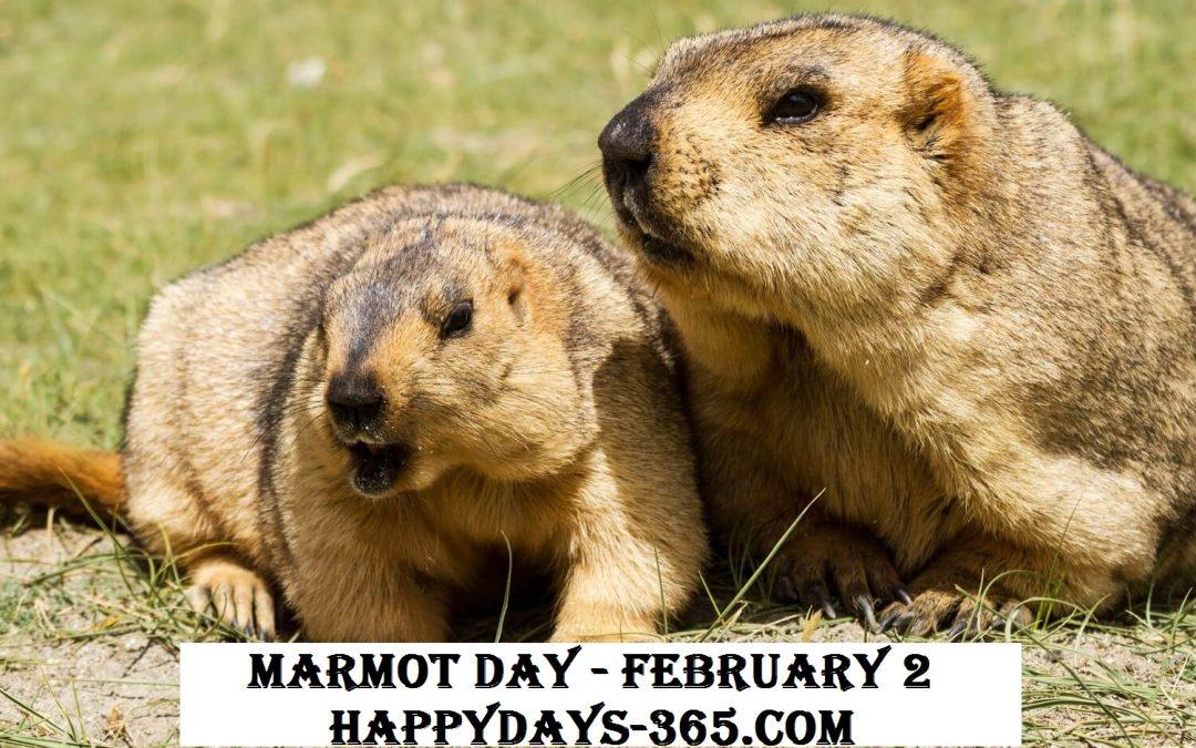 Marmot Day – February 2, 2019