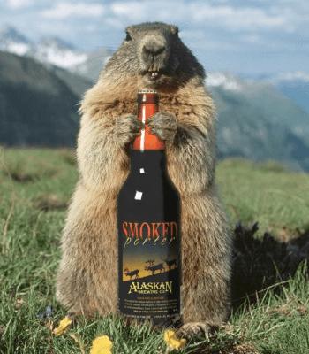 Marmot Day 2018 - February 2