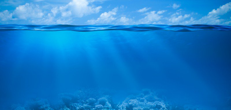 Mother Ocean Day