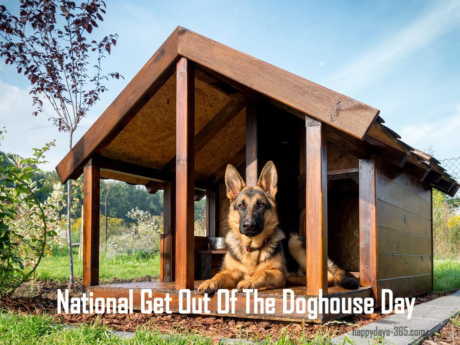 National Get Out Of The Doghouse Day – July 15, 2019