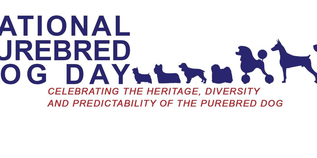 National Purebred Dog Day – May 1, 2021