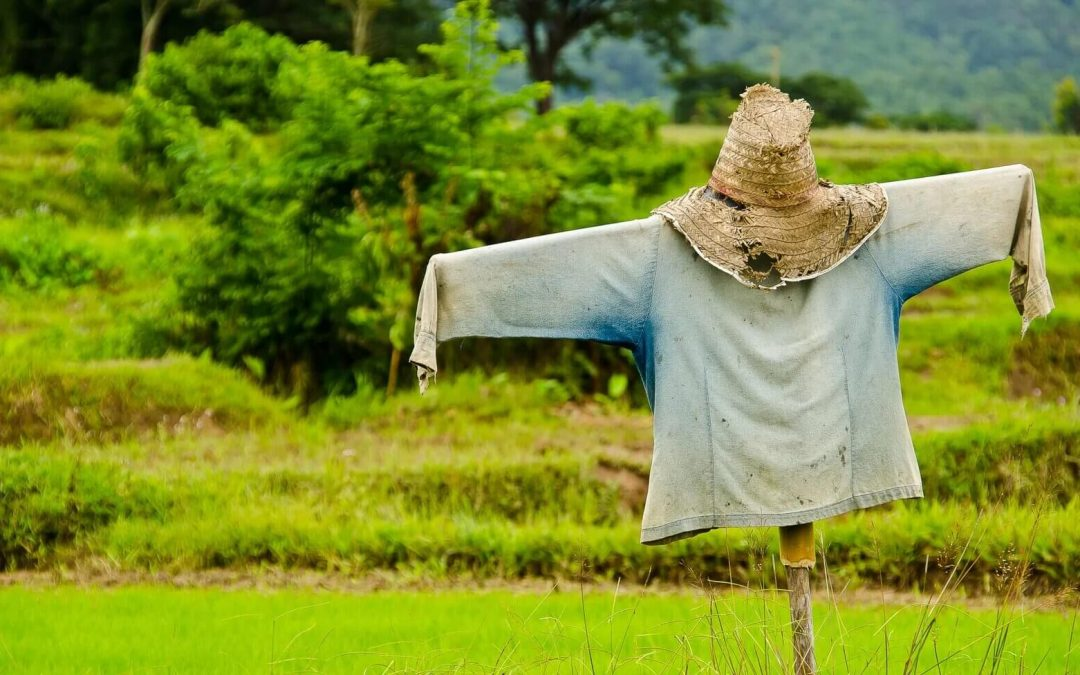 National Build a Scarecrow Day – July 4, 2021