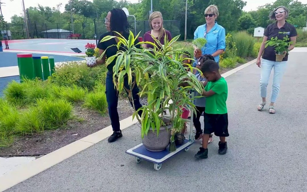 Take Your Houseplant For A Walk Day – July 27, 2021