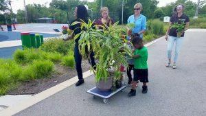 Take Your Houseplant For A Walk Day
