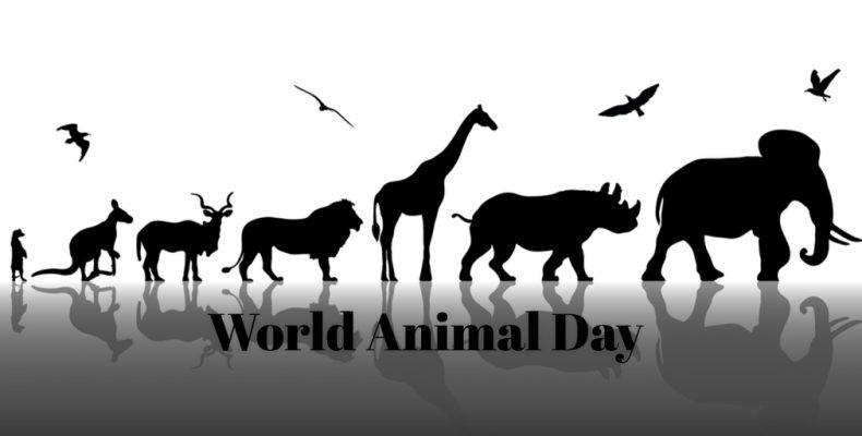 World Animal Day – October 4, 2021