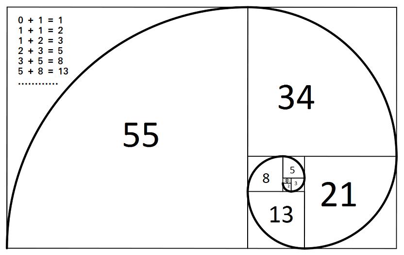 Fibonacci Day – November 23, 2020