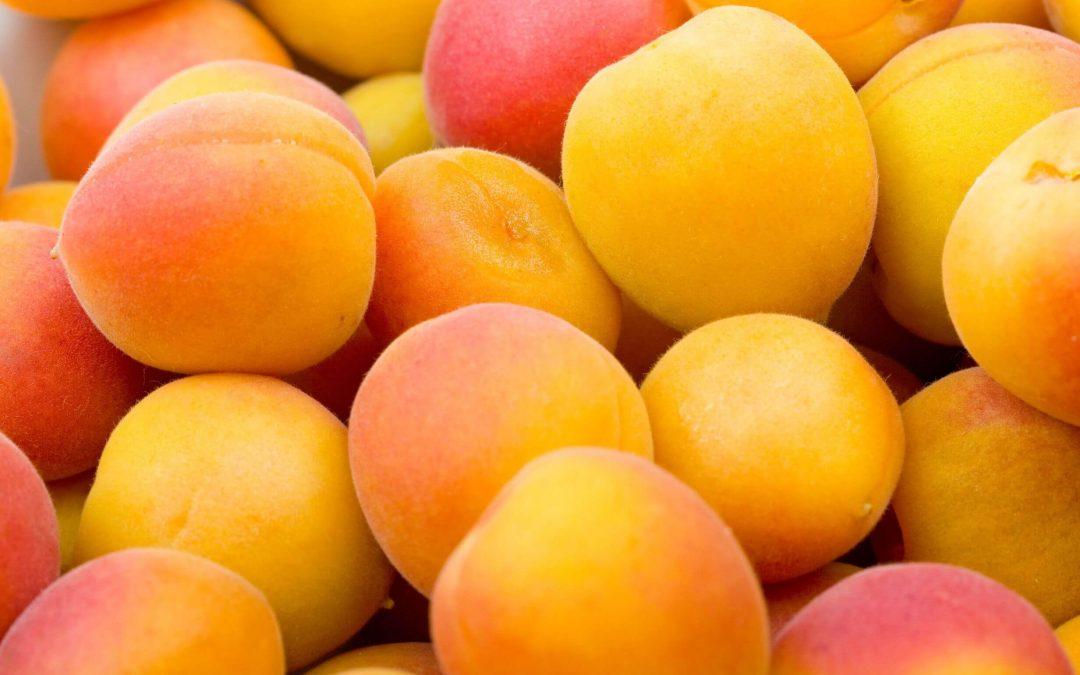 National Apricot Day – January 9, 2021