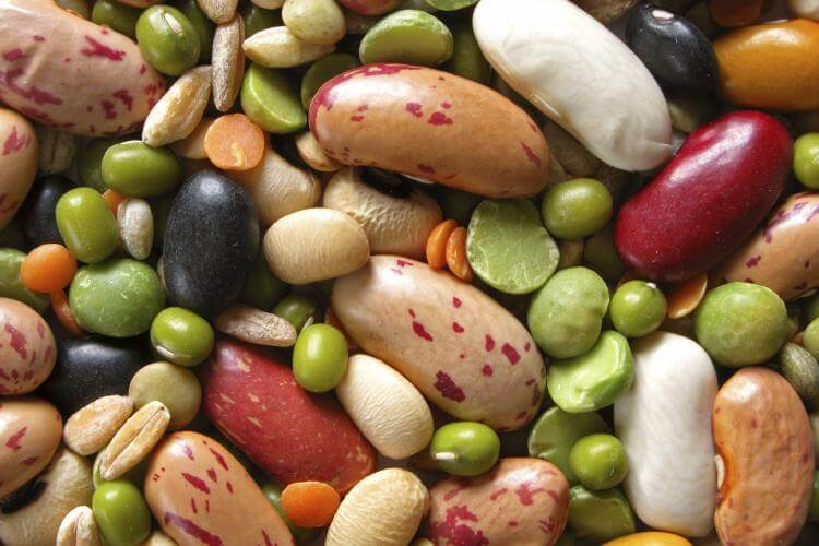 National Bean Day