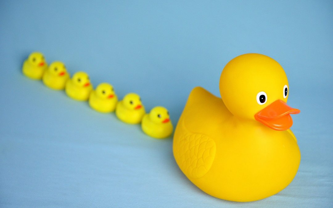 National Lame Duck Day – February 6, 2021