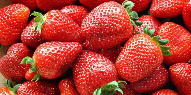 National Pick Strawberries Day – May 20, 2021
