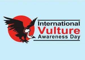 International Turkey Vulture Day