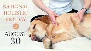 National Holistic Pet Day